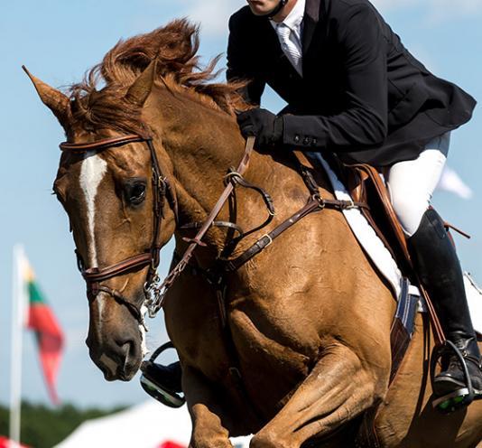compétition cheval Saint-Pierre-Langers