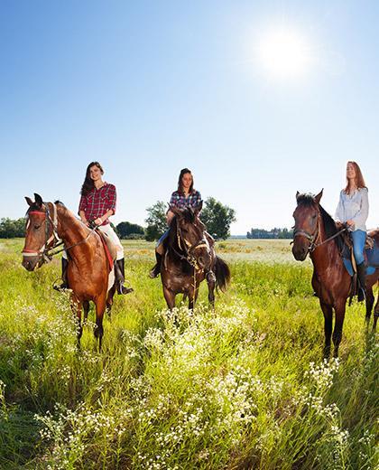 apprentissage equestre Saint-Pierre-Langers